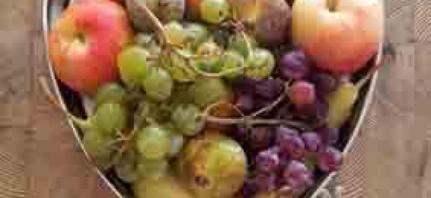 מזון בריא הוא הרבה יותר מאוסף של רכיבים תזונתיים
